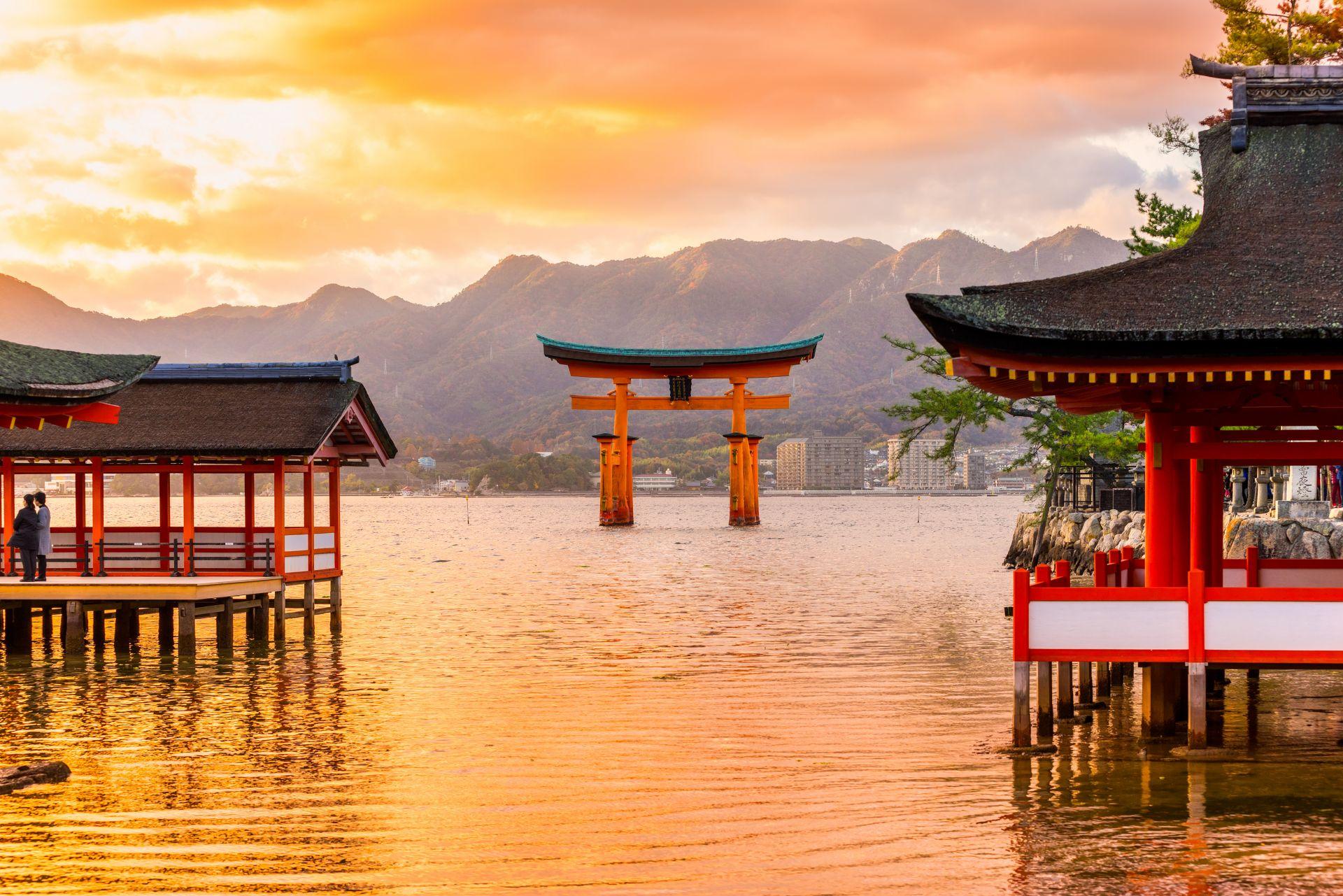 Studium v Japonsku